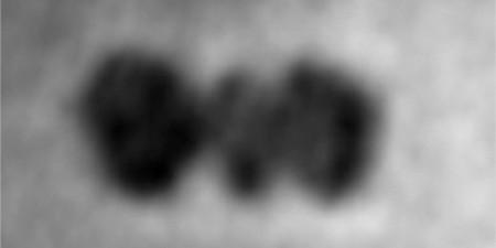 Ésta es la primera fotografía de una proteína y se ha hecho gracias al grafeno