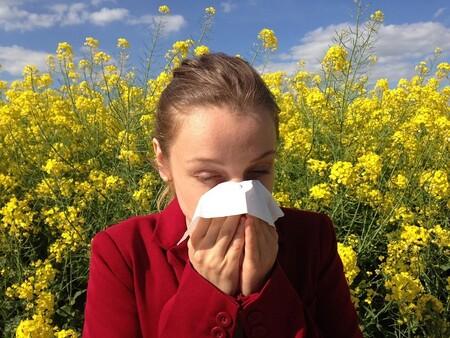 Conducir con alergia respiratoria: un problema que este año viene con fuerza