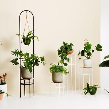 15 macetas bonitas para acompañar a las plantas y a la decoración de tu casa