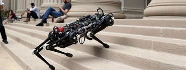 """Este robot """"ciego"""" del MIT es capaz de correr, saltar y subir escaleras sin perder el equilibrio"""