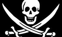 Nintendo acusa a la piratería de hacer caer en un 50 % las ventas de juegos de DS