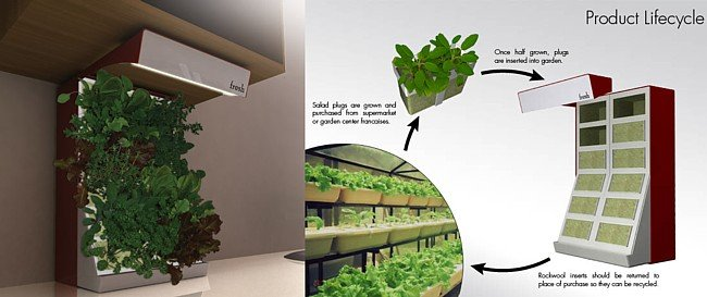 Fresh un huerto de interior para plantas arom ticas for Plantas aromaticas de interior