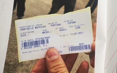 peso goliat canal buey registrado espana