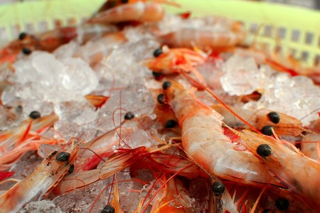 Shrimp 1578174 960 720