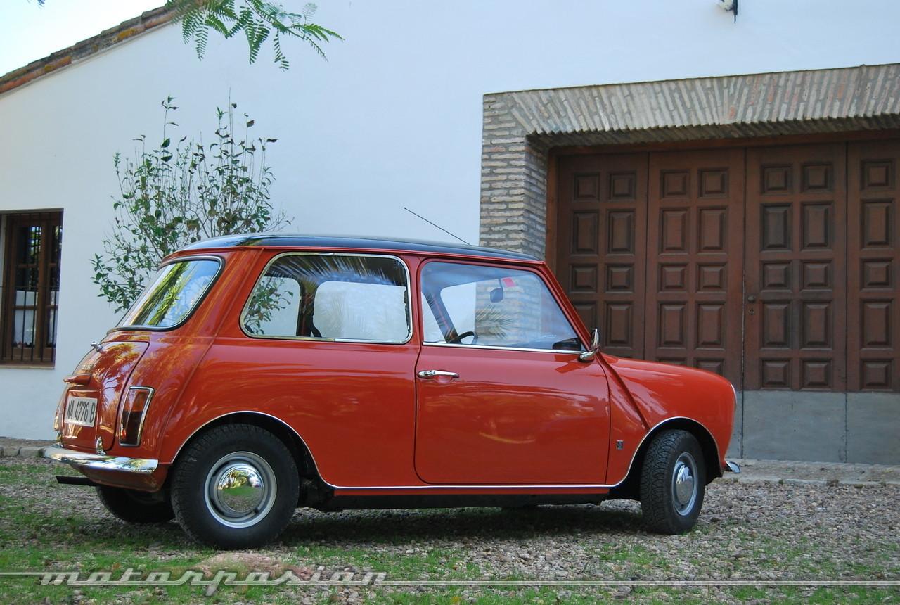 Foto de Authi Mini 850 L (prueba) (7/62)