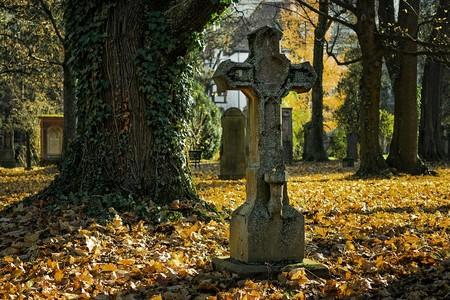 Autumn 2182010 960 720