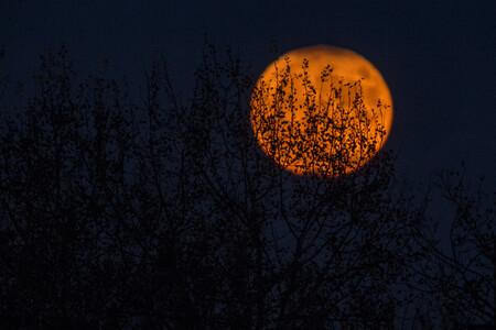 Red Moon Como Fotografiar Rx2