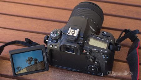 Canon Eos 90d Review 7