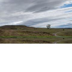 Foto 44 de 296 de la galería porsche-718-spyder-prueba-contacto en Motorpasión
