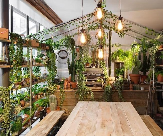 Greenery Hotel Airbnb