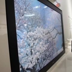 Foto 10 de 10 de la galería sharp-8k4k en Xataka