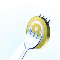 Bitcoin se parte en dos: Bitcoin Cash surge como una alternativa con un futuro incierto