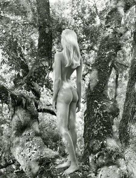Calendario Pirelli 2012: los desnudos más exclusivos de las mejores modelos
