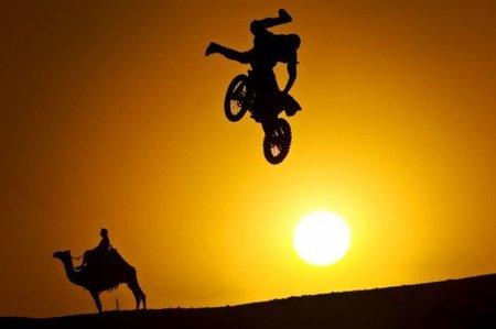 robbie saltando Egipto