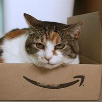 Amazon elige sede, pero ¿han pagado de más las elegidas?
