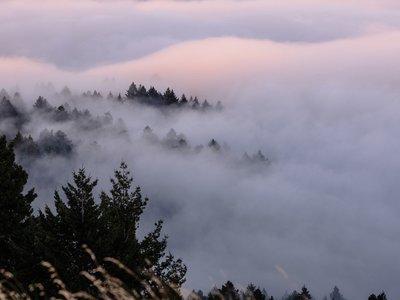 Ver la niebla cubrir todo a su alrededor tiene un nuevo significado cuando es en timelapse 4K