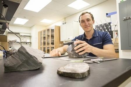 Este bosque fósil ha aparecido en la Antártida