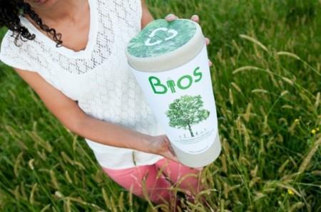 Bios, las urnas que convierten tus cenizas en un árbol
