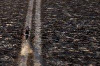 Dakar 2012: Iquique - Arica, etapa 10