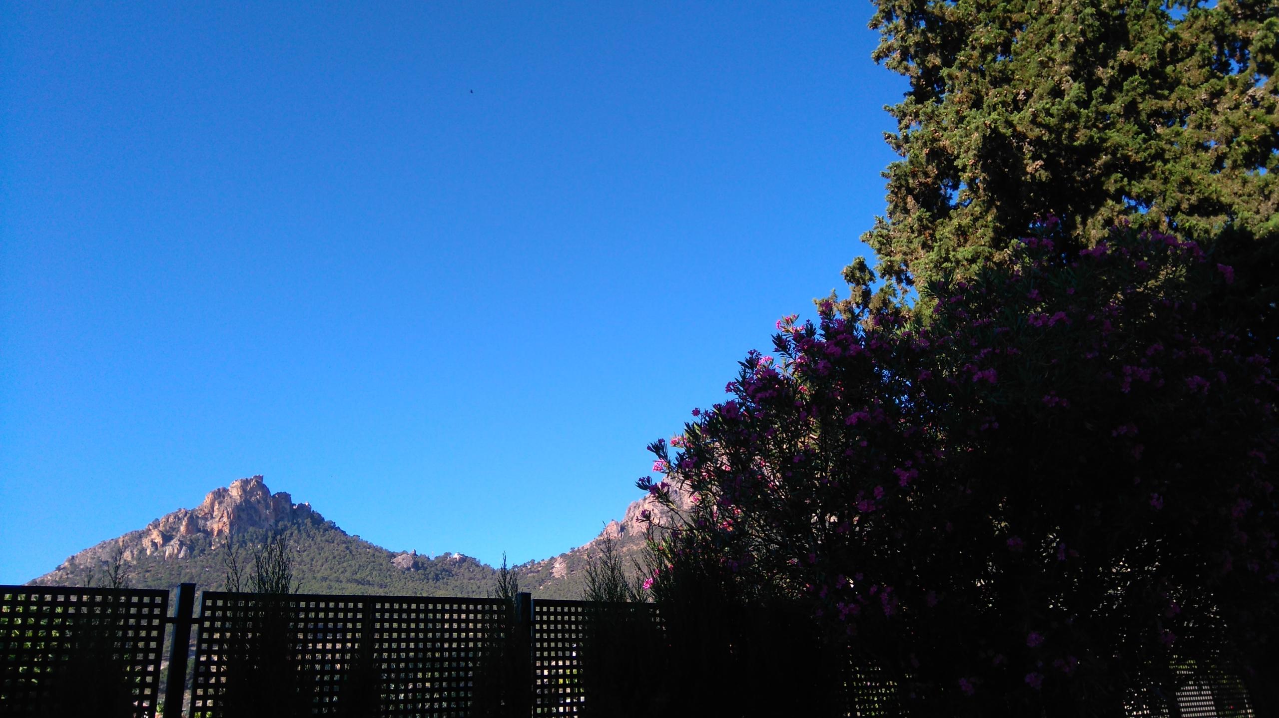 Foto de Sony Xperia M4 Aqua (12/19)