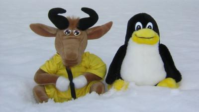 Cómo migrar de Windows XP a GNU/Linux