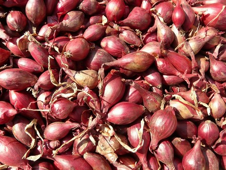 Red Shallots 5768 1920