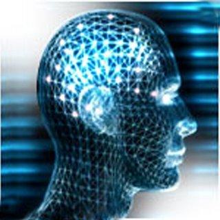 Breves apuntes sobre la inteligencia humana (y las trompas de elefante) (y II)