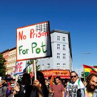 ¿Qué pasa cuando legalizas la marihuana? Que la violencia asociada a su tráfico se desploma