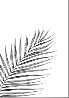 Póster Hoja de Palmera Negra 50x70cm