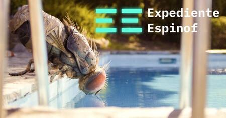 Expediente702