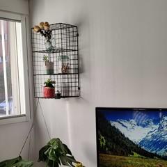 Foto 35 de 95 de la galería fotos-hechas-con-el-oneplus-8 en Xataka
