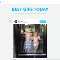 Theinternet.wtf; así es la web que te dice cuáles han sido los GIFs, imágenes y vídeos más compartidos del día