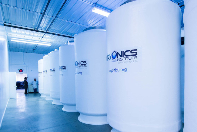 Cryogenic Chambers 7342