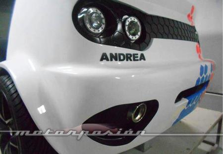Pardo Cars Andrea