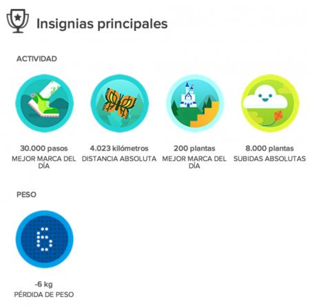 Fitbit insignias