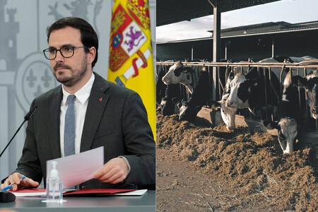 """El ministro Garzón pide que se coma menos carne y la industria le acusa de """"atacar"""" al sector (aunque el Gobierno no ha anunciado medidas concretas)"""