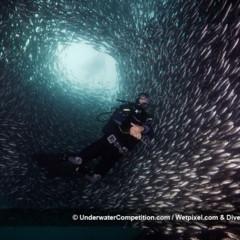 Foto 25 de 34 de la galería underwater-competition en Xataka Foto