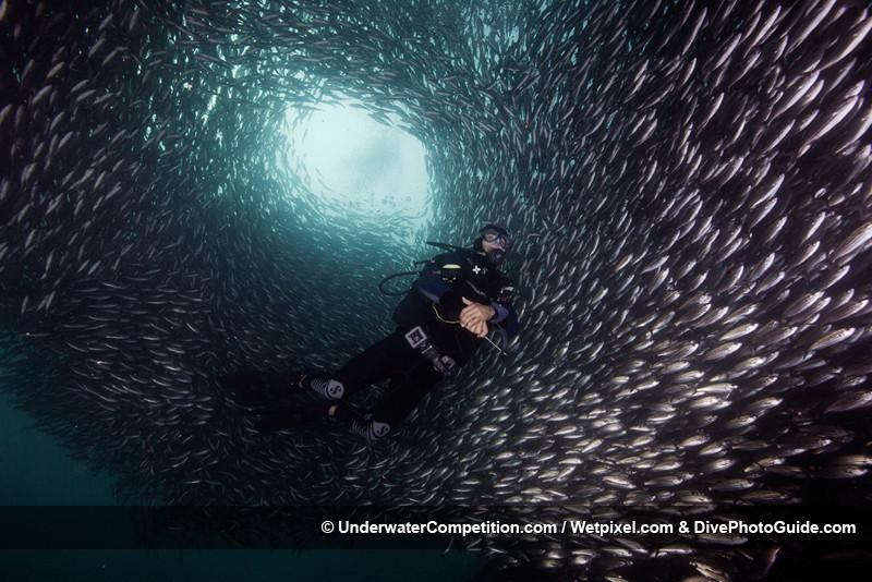 Foto de Underwater competition (25/34)
