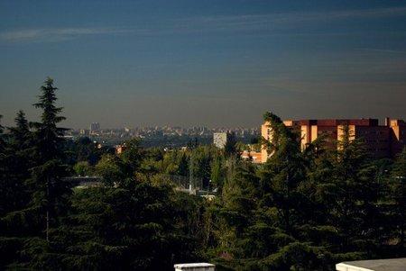 Contaminación Madrid Parque