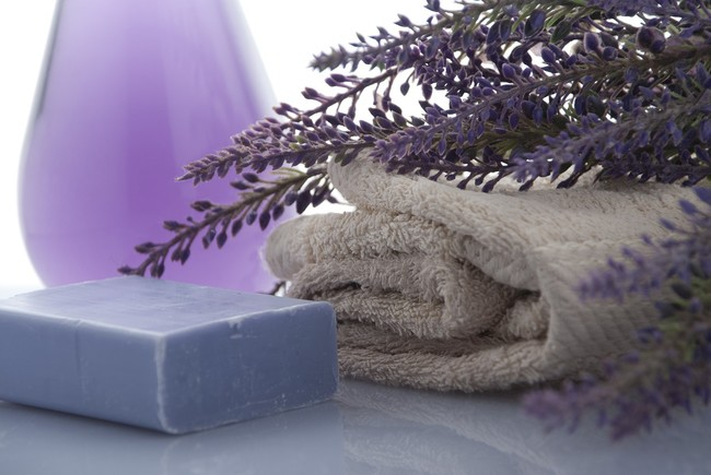 Lavender 3066531 1280
