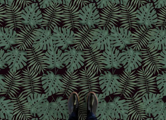 Monstera Feet