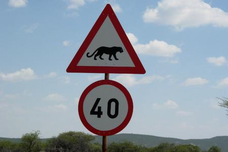 senal-trafico-namibia-pantera