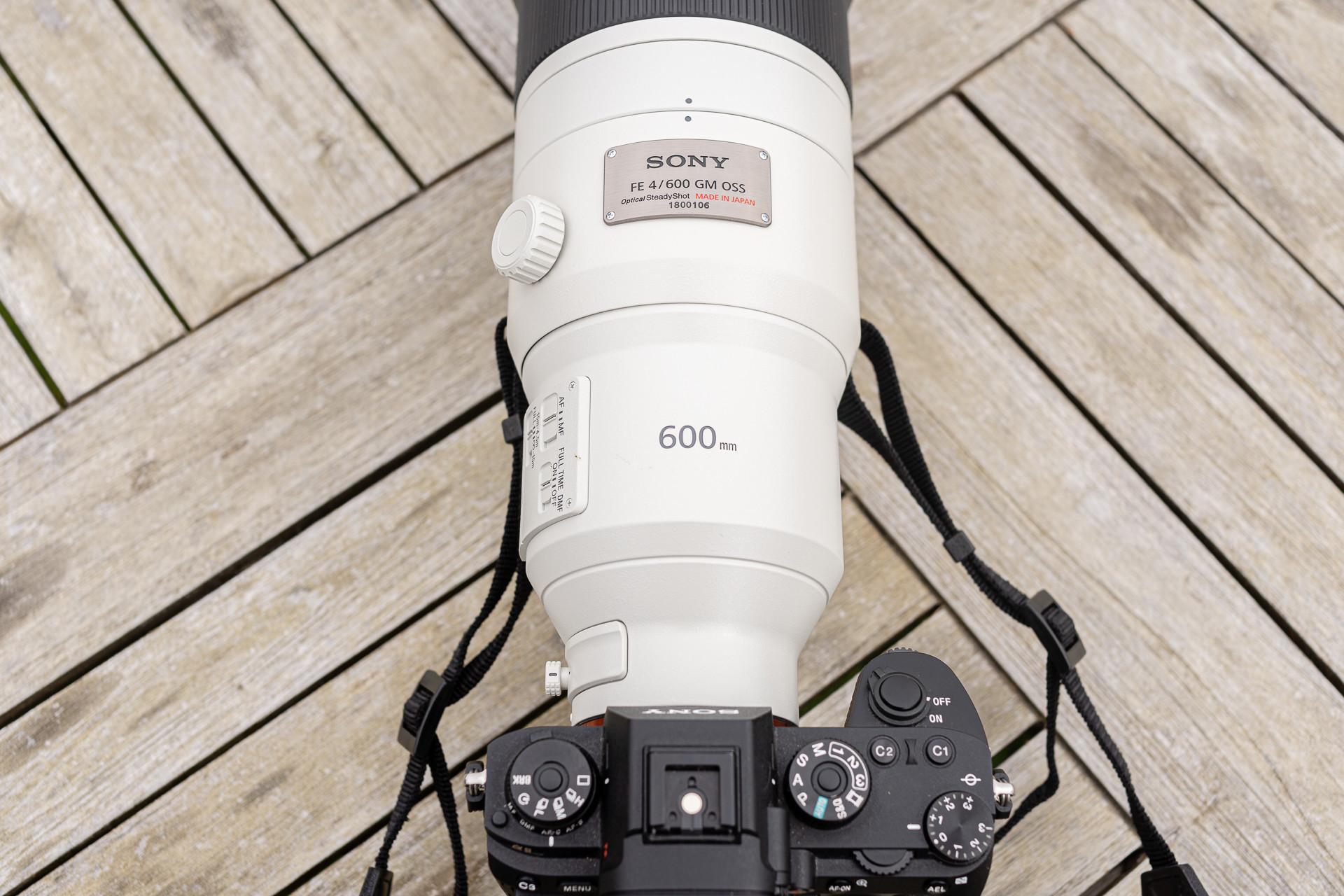 Foto de FE 600mm F4 GM OSS y el FE 200-600mm F5.6-6.3 G OSS (6/27)