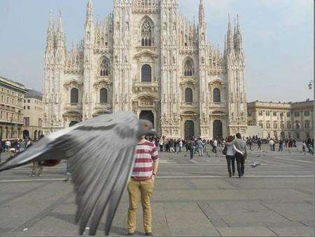 Las benditas palomas