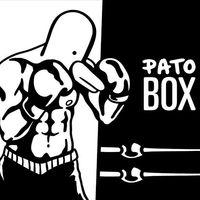 El 7 de mayo llegará la gran actualización de 'Pato Box': se añade el modo Arcade y un jefe secreto