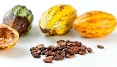 Qué chocolate beneficia más nuestra salud