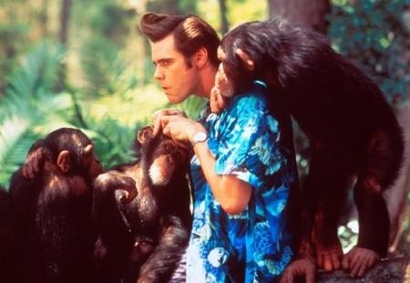 Jim Carrey protagonizará la comedia 'Ricky Stanicky'