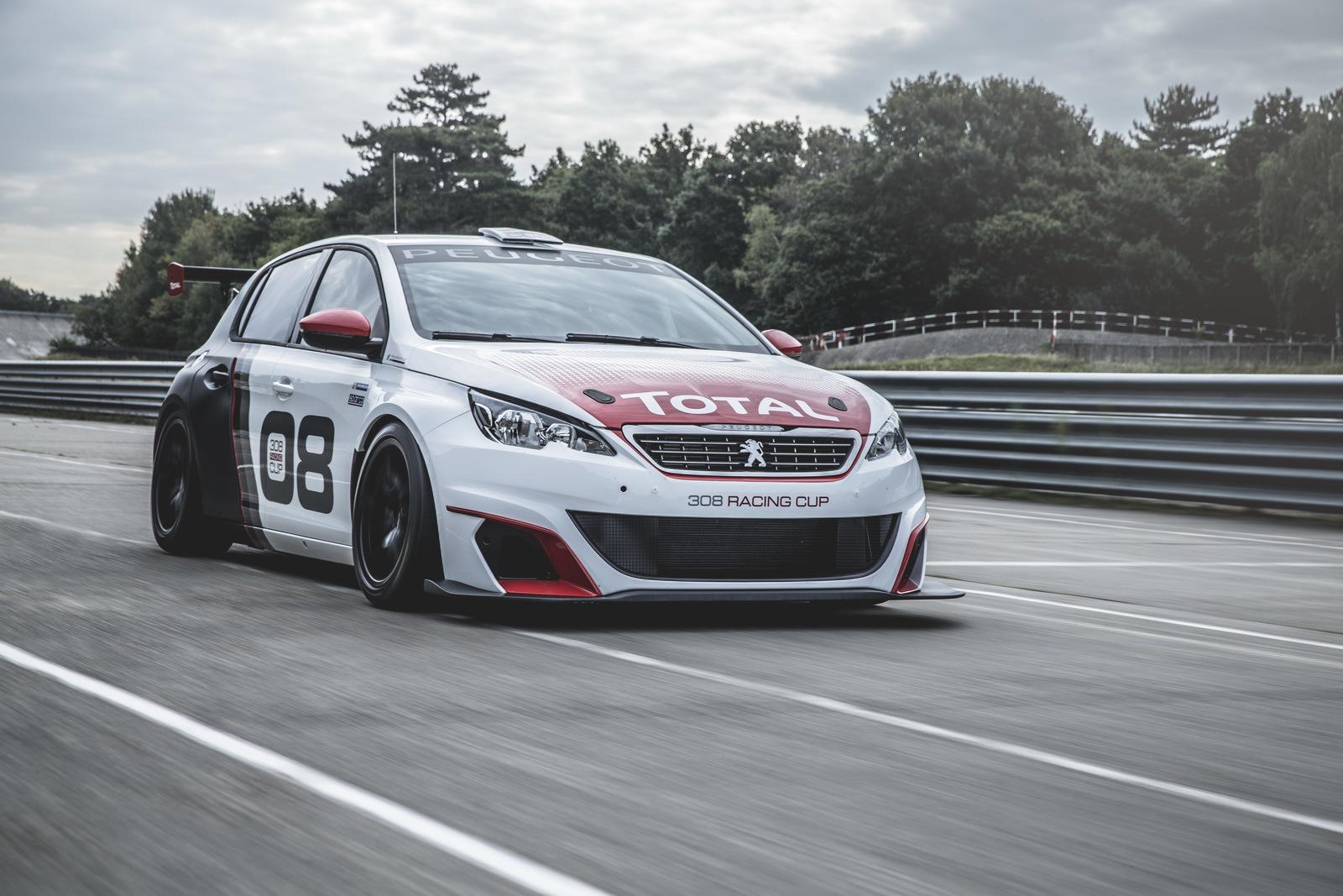 Foto de Peugeot 308 Racing Cup (10/13)