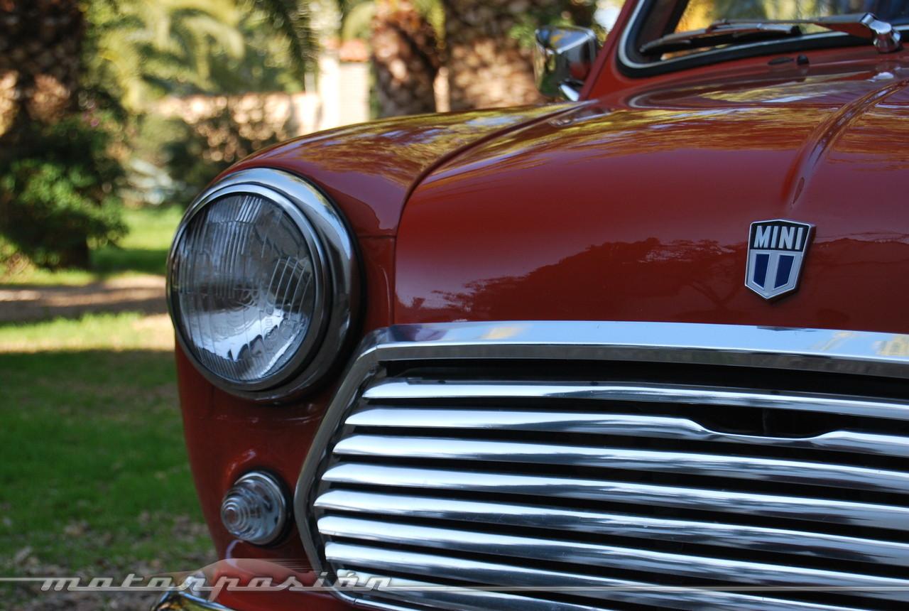 Foto de Authi Mini 850 L (prueba) (17/62)