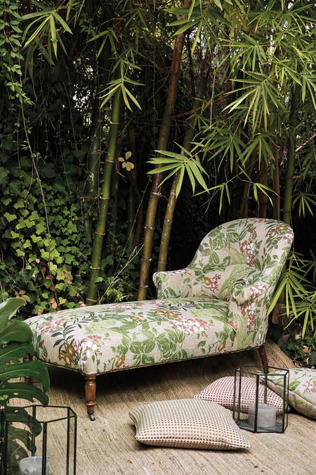 Diseño tropical Lizzo